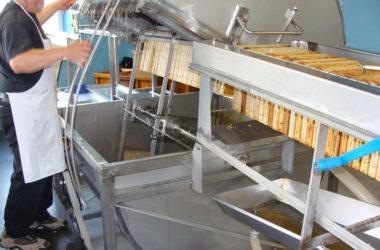 extraction-cadre-de-miel