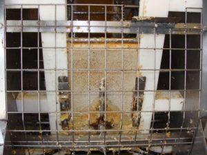 Extraction du miel avec des couteaux