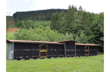 Rucher chalet de montagne traditionnel Alsacien dans les Vosges du Bas-Rhin